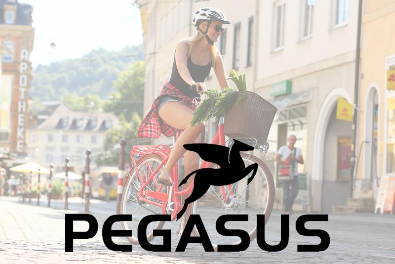 ZEG - Eigenmarke Pegasus